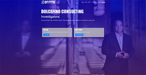 Wayne Dolcefino Consulting